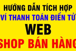 Tích Hợp Ví Thanh Toán Điện Tử, Web Shop Bán Hàng Online MoMo, Zalo Pay 001